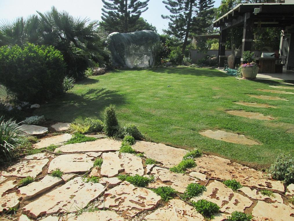 אבני קפיצה וכמדרך ודשא מעוצב עוטף ומקשר בגינה