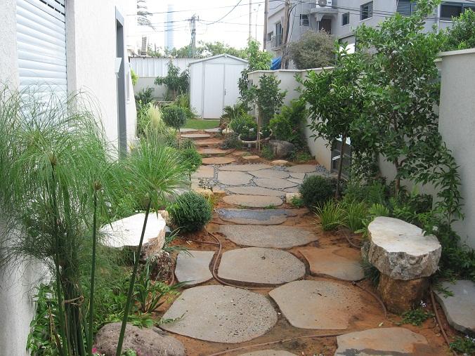עיצוב נופי מותאם לגינה בתל אביב