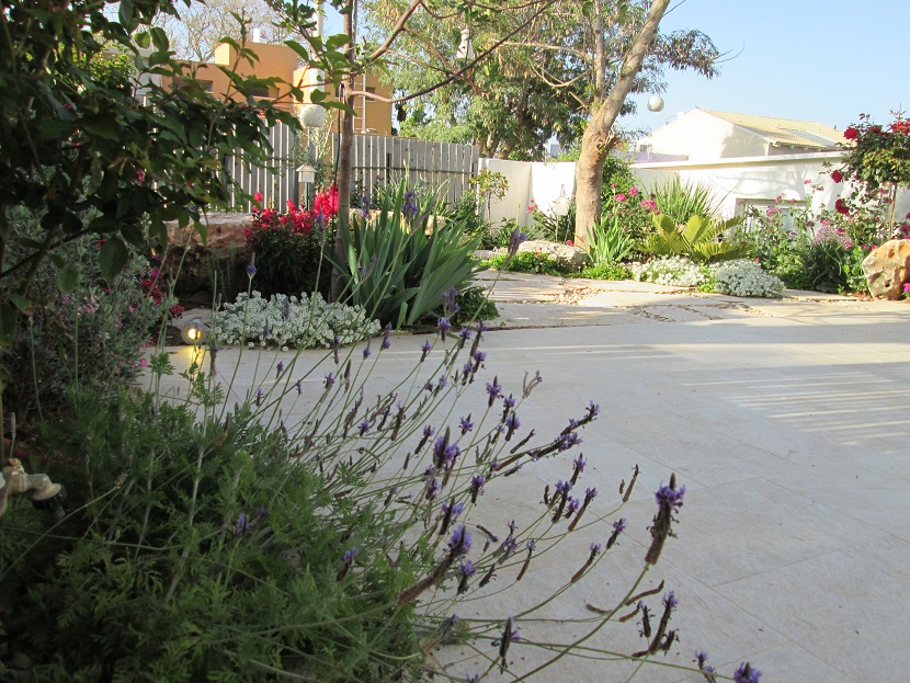 גינה מעוצבת ברעות - מבט אל הגינה העליונה של הבית היוצר תמונה שנראית לא רע מכמה כיוונים