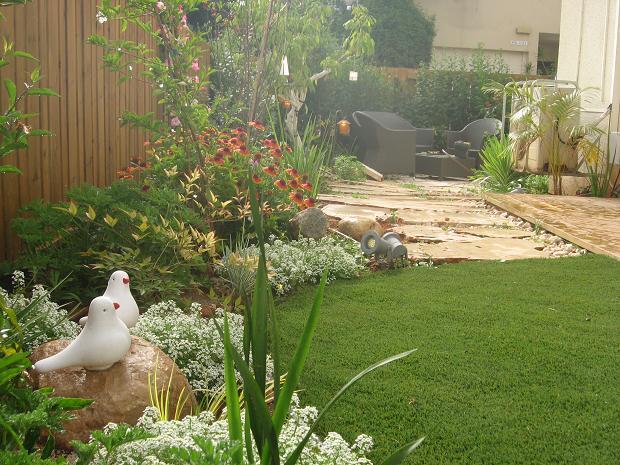 שיפוץ גינה עם שילוב דשא ועיצוב צמחיה ומעברים