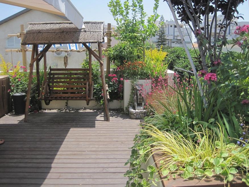 כלי קיבול עם צמחים מתאימים גם בהתבגרות השורשים