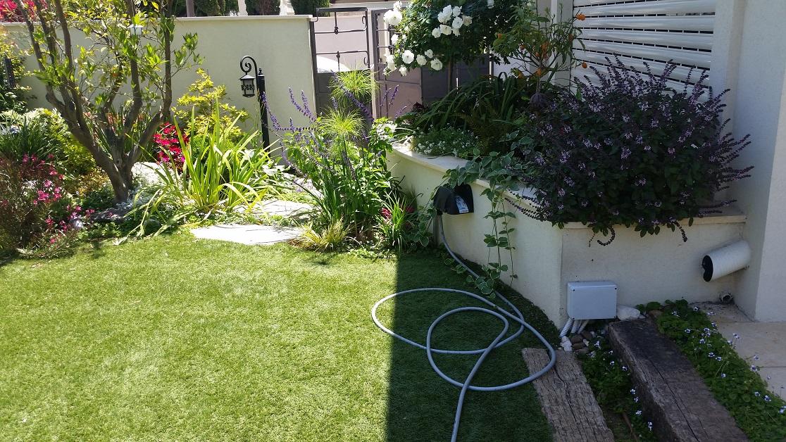 עיצוב גינות ברמת השרון - צמחים בהתאמה לאבני מדרך ושביל כניסה