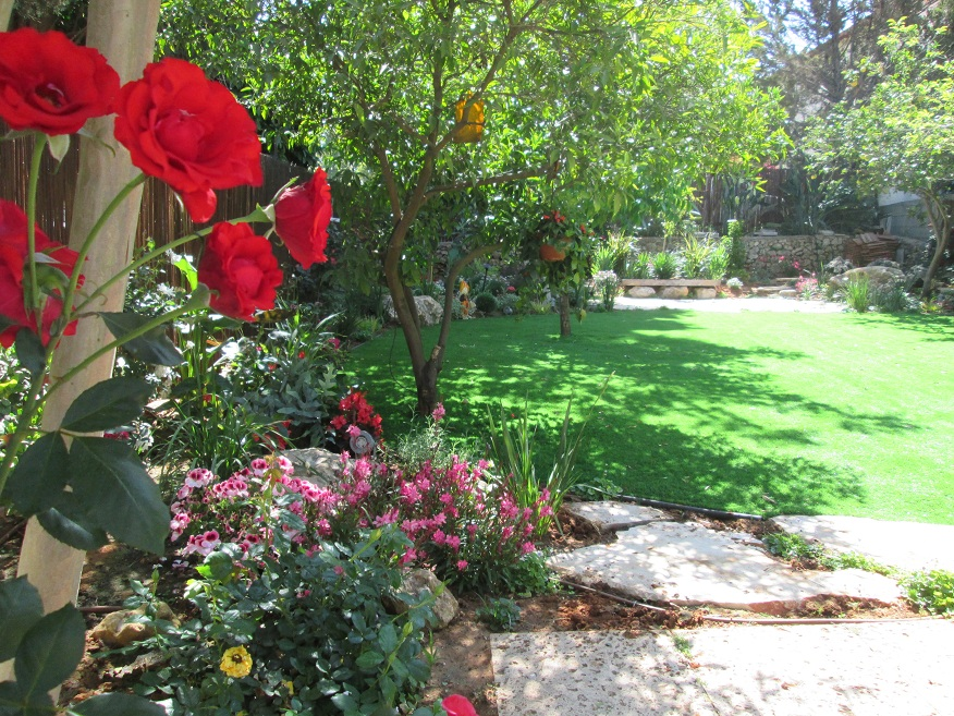 תכנון והקמת גינה עם עיצוב דשא עגול