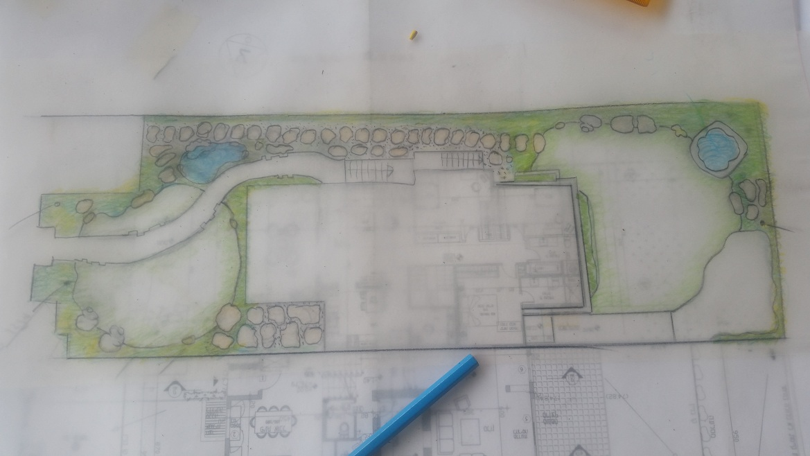 תכנון גינה פרטית בכפר יונה