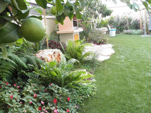 דירת גן בחולון 2011