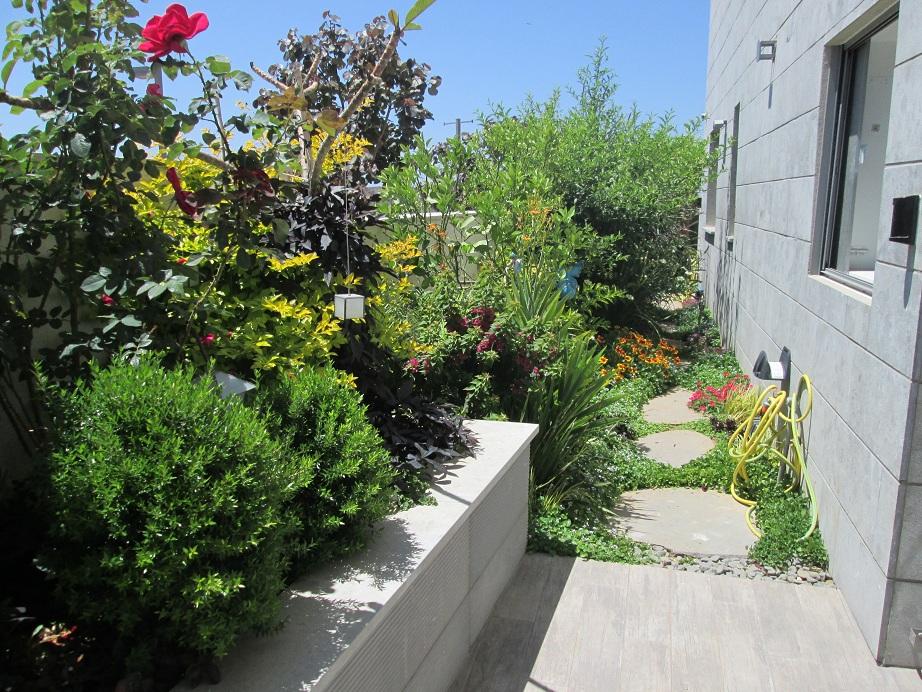 מעבר צדדי אל הגינה