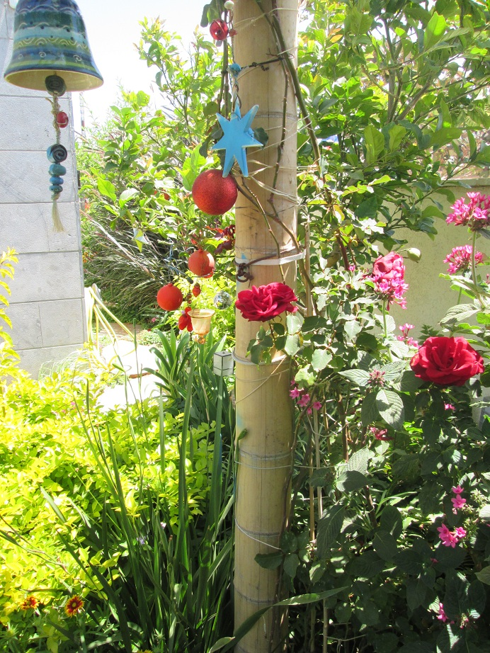 דירת גן רוני רעננה לאחר שנה 2014