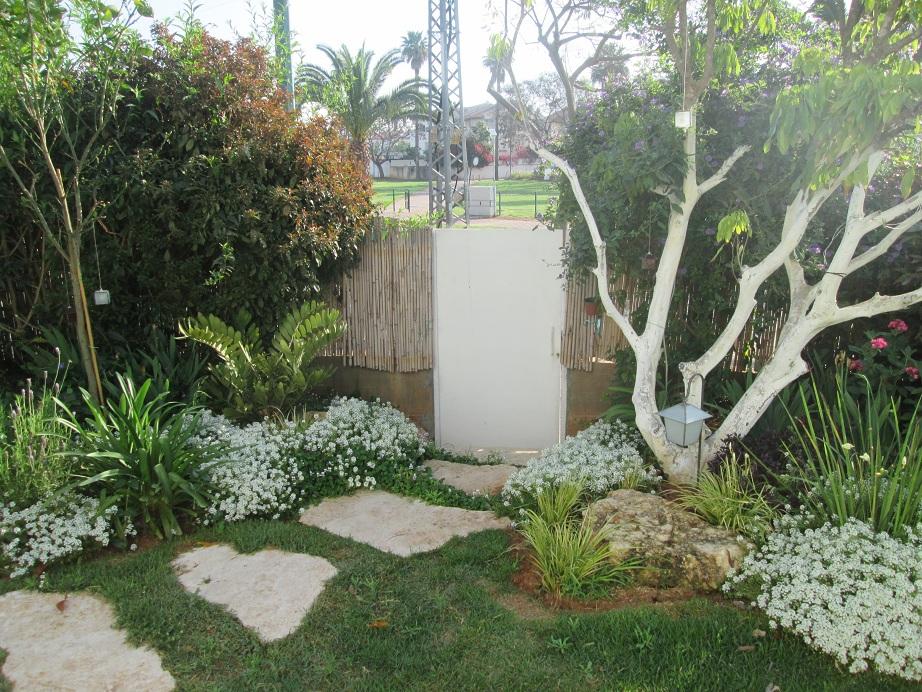 אזור הירידה ליציאה לגינה שפתחנו