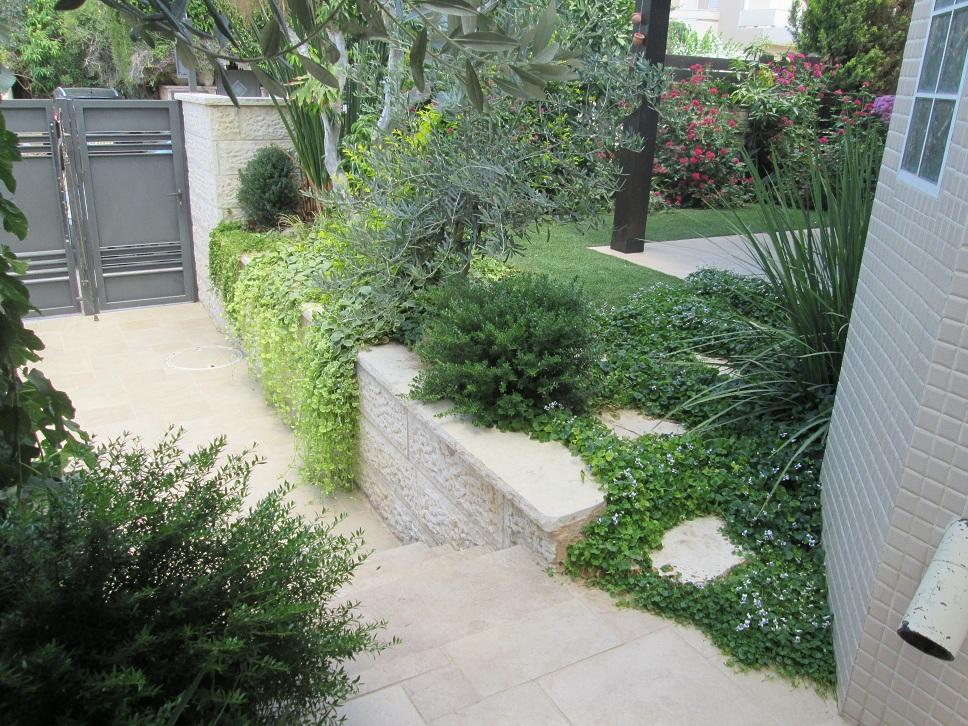 מבט פראי של הקמת גינה קטנה באבן יהודה