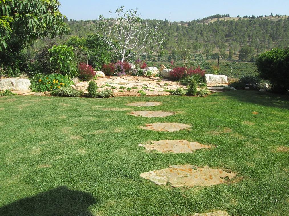מבט גדול על הגינה ואל הטבע והנוף המדהים ששמרנו על פתיחות לנוף כמובן