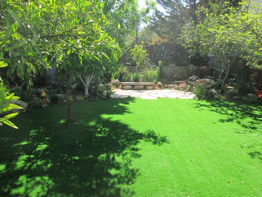 מבט אל מעגל הדשא שיצרנו