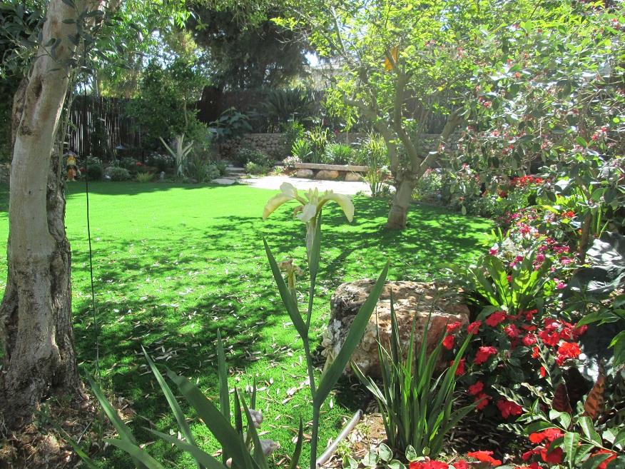 אירוסים לדעתנו מתאימים בגינות מכיוון שהם צמחים חזקים שמתרבים יפה לבדם