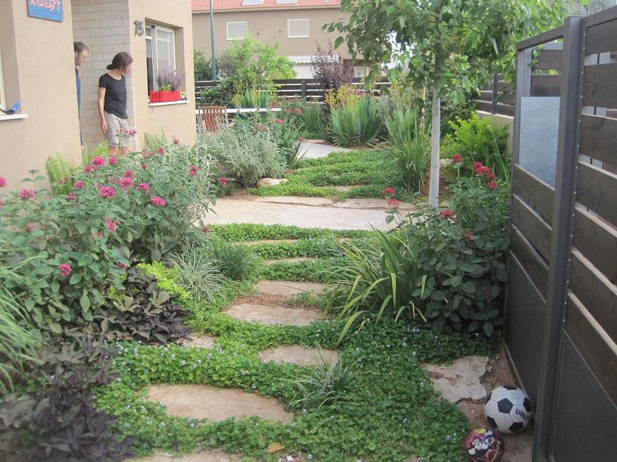 תמונה מהחניה אל הגינה המעוצבת