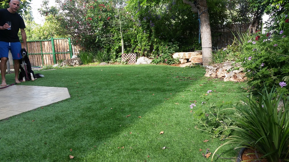 דשא ישר בגובה
