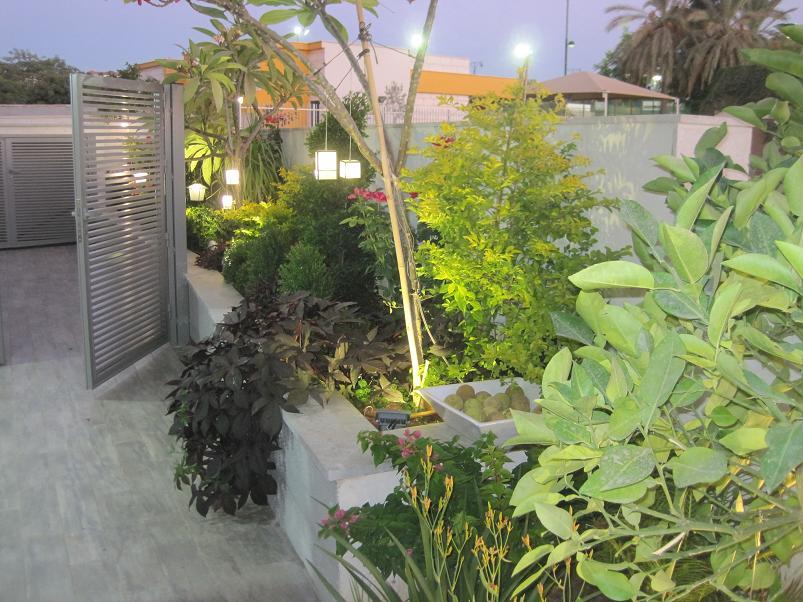 מעבר צדדי מעוטר באדנית ארוכה וצמחים המנסים לדמות תמונה מתאילנד שהלקוח הביא