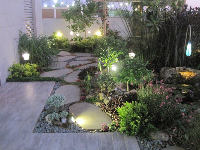 הגינה משולבת בחלוקי נחל אפורות וצמח הלויקופיליום האפור שגזום בצורת בונסאי שמשתלב