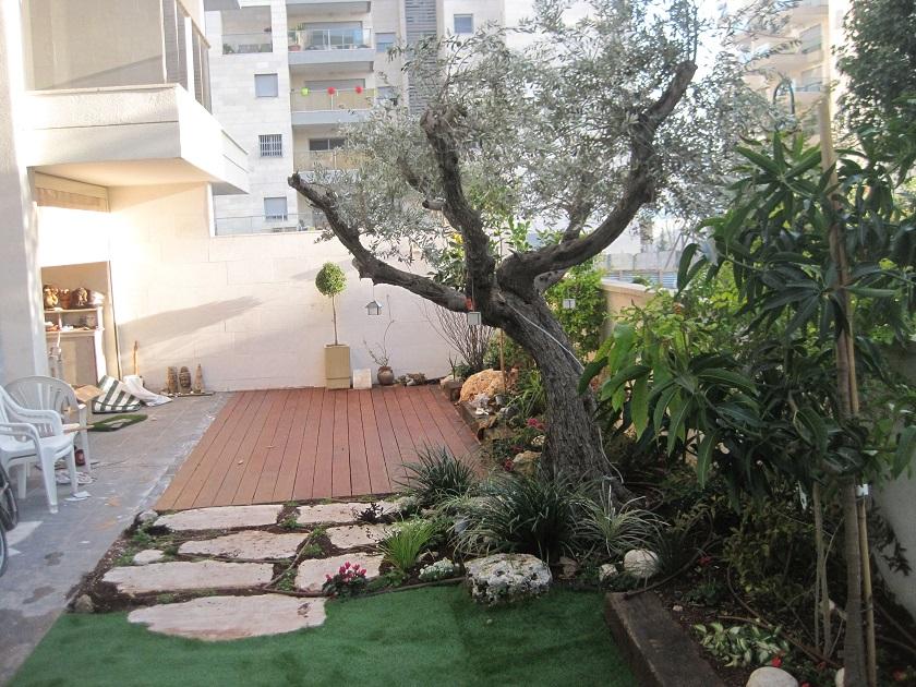 דירת גן חולון ביצועה חורף 2013