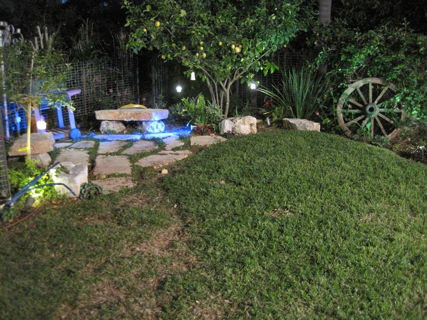 פינת מנגל פנימית מאחורי קו הדשא אבני מדרך וסיגליות זוחלות ביניהם ומתחת לעץ הלימון שתולים מגוון שרכים וצמחי צל שלא הגיעו עדיין לביטוי