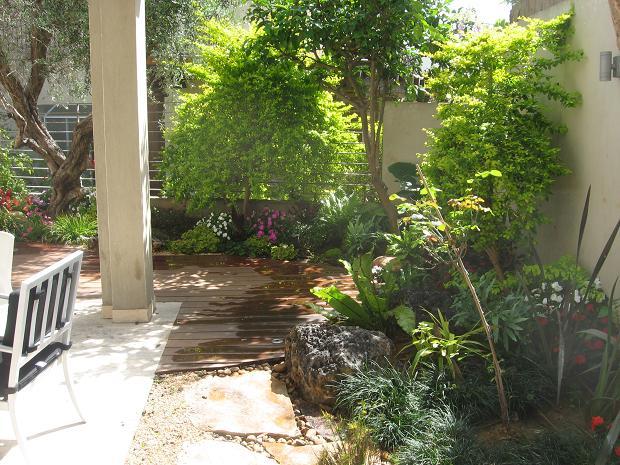 הכניסה לגינה מהמעבר