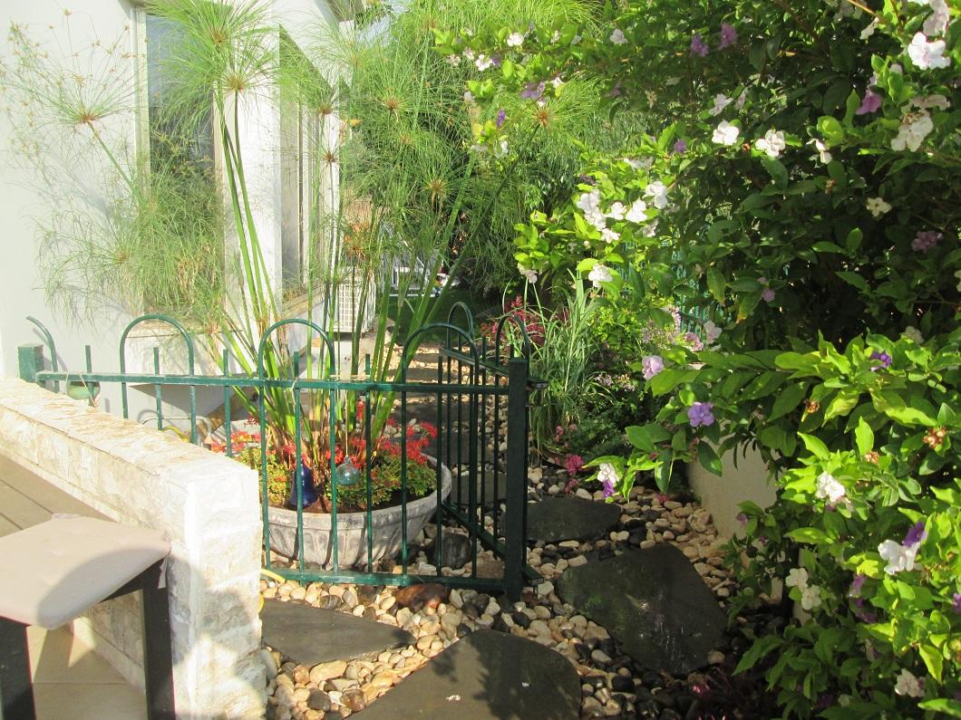 מעבר פתיחה בגינה שעשינו לחלק האחורי פנימי ויצרנו קשר מזמין של נוחות וחיבור