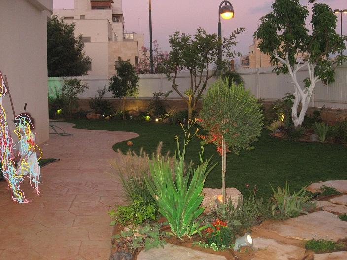 מבט בערב אל הגינה תאורת הגינה בכמה צבעים