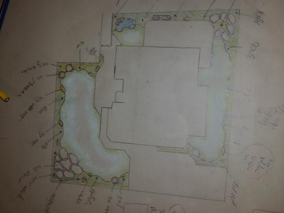 תכנון גינה חצי דונם מגרש