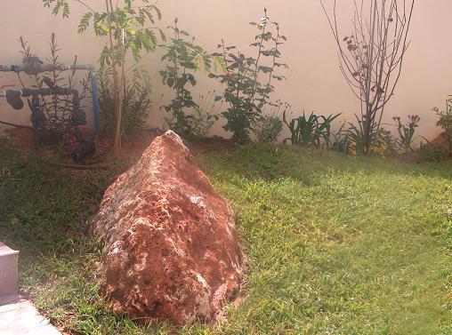 סלע בשילוב לצד המדרגות והדשא בהגבהה יוצר שילוב סלע נחמד