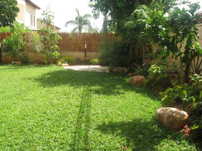 גינה מעוצבת עם דשא רגיל מסוג דרבן שמגיע עד לשילובים העוטפים את הדשא