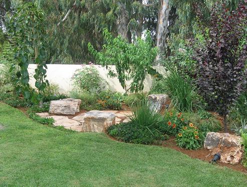 שילוב של צמחים וסלעים היוצרים אווירת טבע