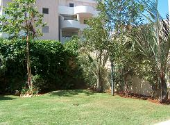 פינה מעוצבת בגינה ברעננה