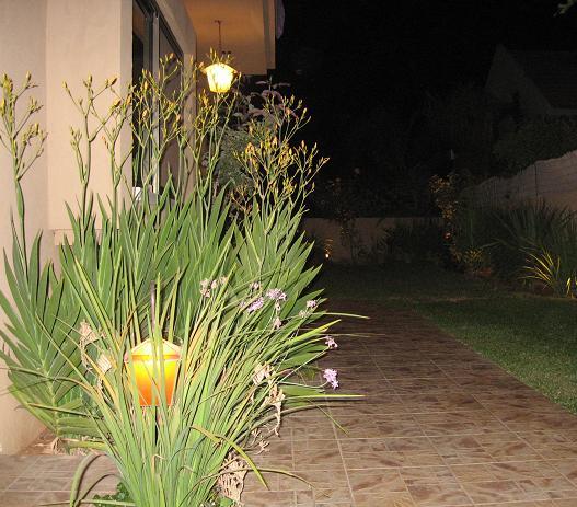 תאורת גינה מבית אופק תאורת גן