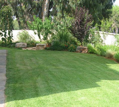 דשא לאחר כיסוח אומנתי לצד סלעים המאפשרים פינת ישיבה