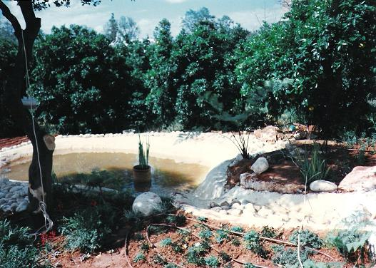 שילוב בריכות מים 2006