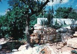 מסלעה מאבני לקט טבעיים מתאימה לשילוב צמחים שמתאימים למסלעות