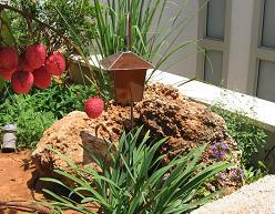 סלע חירבה בגינה