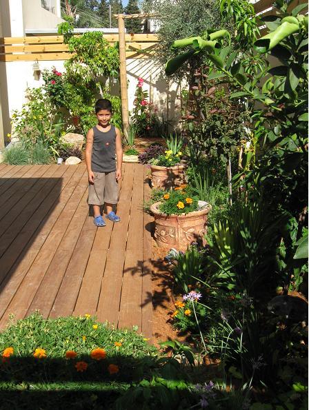 דק היציאה מהסלון למרפסת העיקרית לגינה זו מזמינים אותי לטיפול פעם בחצי שנה ולמרות זאת אני נהנה מהתבגרות של בחירת צמחים נכונה