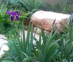 סלע ספסל כולל רגליים מסלעים נוספים