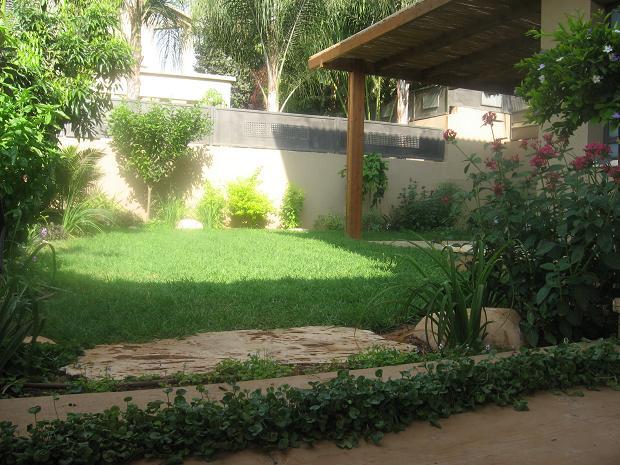 כניסה לגינה מהחניה דרך אדן רכבת אבן מדרך ומבט על הגינה