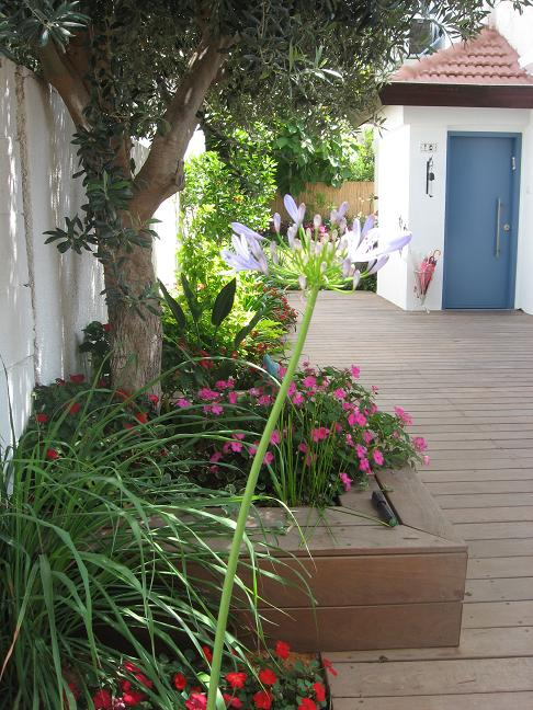מבט מהכניסה המראה את עיצוב כלל הגינה במבט