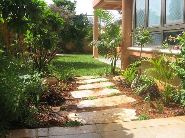 אבני מדרך דילוג להגעה לקו הדשא דרך אזור של עיצוב בצמחים