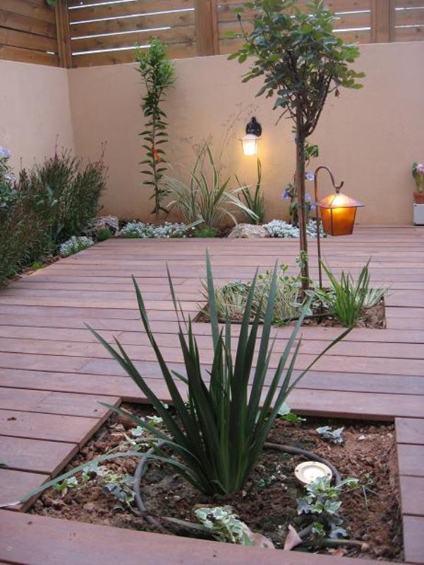 פתחים בדק לשתילות צמחים