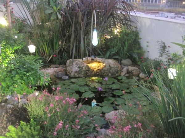 ברכת נוי ברעננה עם עמוד עתיק המשמש למפל המים