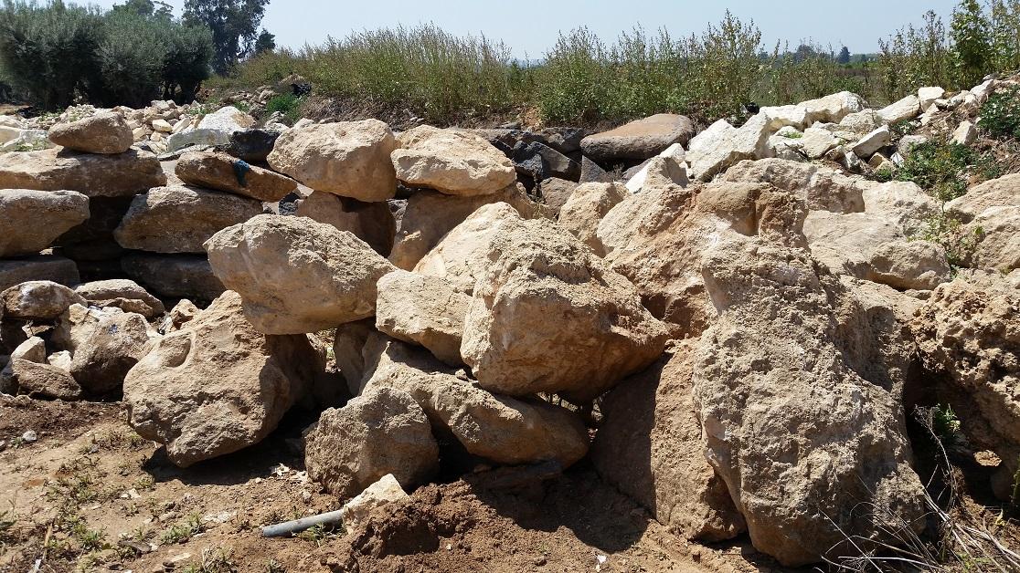 אבן סלע כורכר מעומק חפירת טרקטור