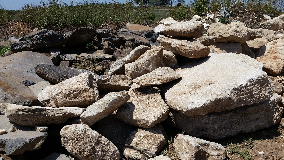 אבן חוף ים עשויה צדפים וחול