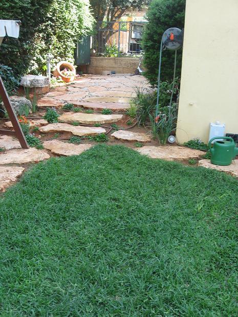 אבני מדרך בטופוגרפיה ודשא משתלב אליהם