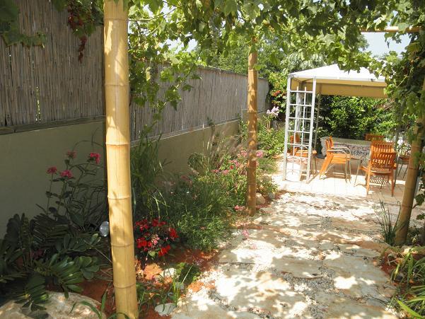 פרגולה במבוק במעבר אל הגינה הפנימית וגם סוכך מעין סוכה  מוכנה עם גפן וענבים