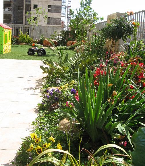 צמחי נוי לגינת נוי פרטית לבניין עם דירות גן בכפר סבא