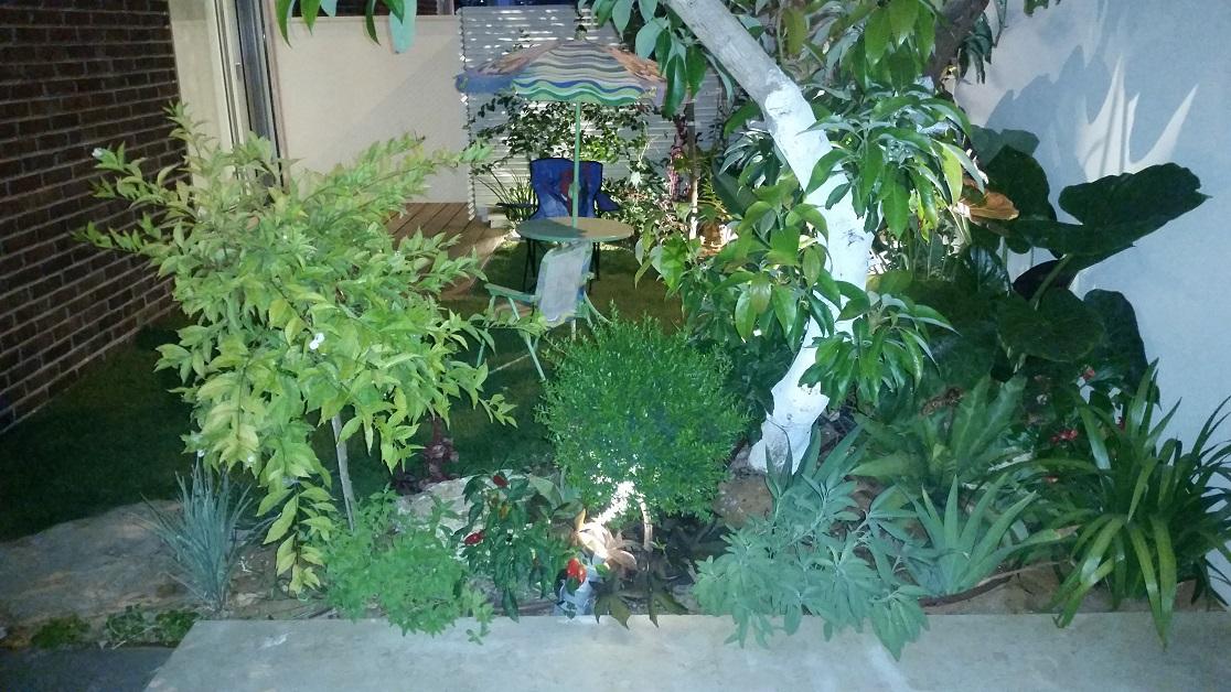 צמחים שונים וההתאמות ביניהם חשובות