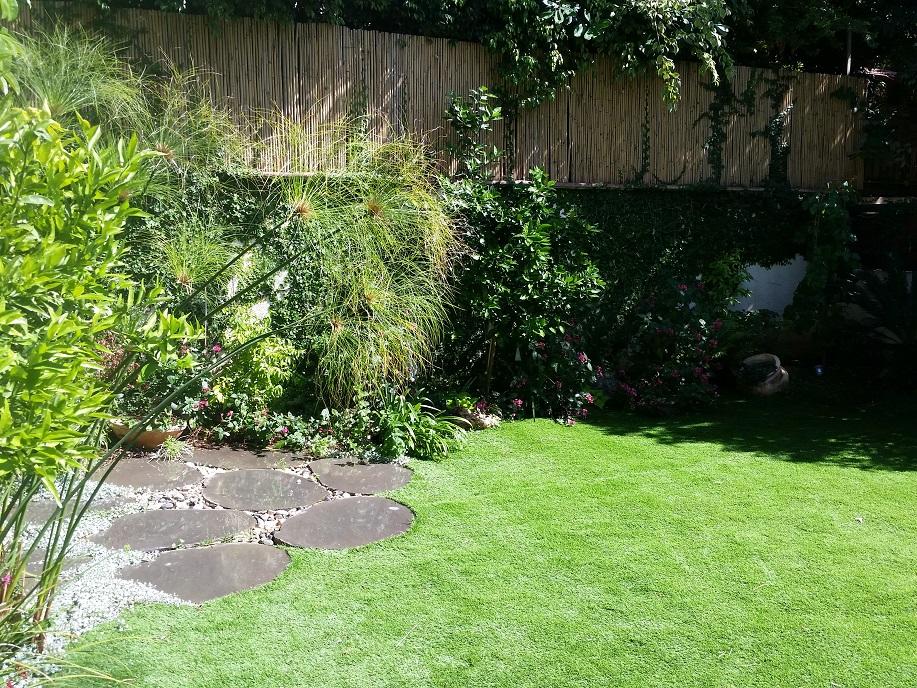 הדשא נחתך בהתאמה לאבני המדרך