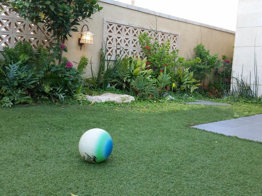 כדור רגל בגינה מעוצבת יכול להסב נזקים רבים לגינה ואו לתאורה
